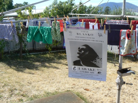 Hobart Blasko Washing