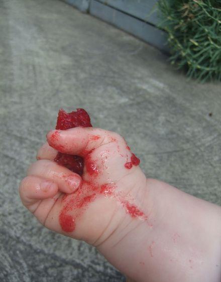 Little hand holding a plum