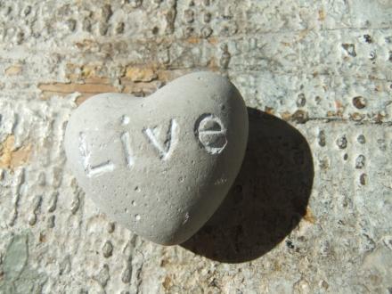 Live Love Pebble
