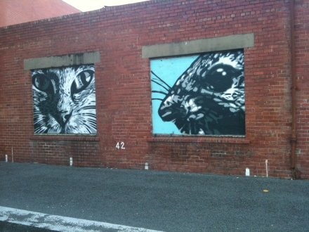 Cat Rat Mural Street Art Hobart