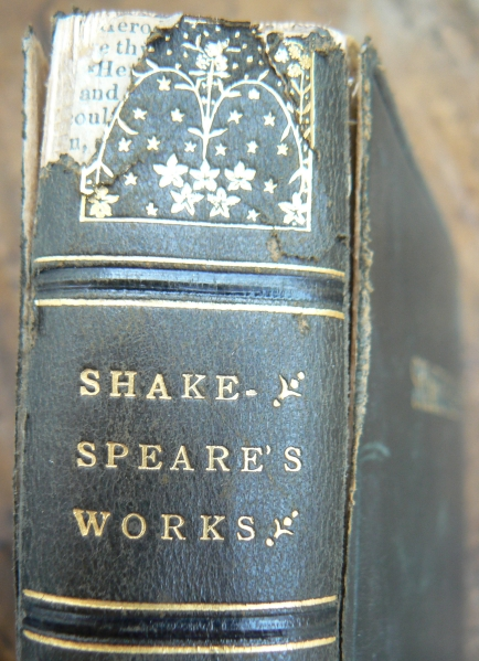 Awesome Facts Shakespeares Works Old Vintage Book