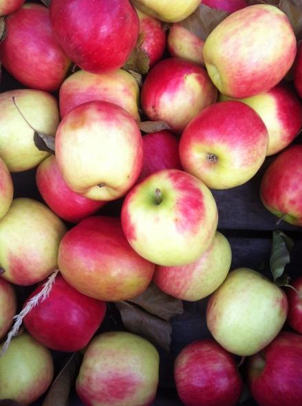 Out About Tasmania Salamanca Market Fresh Produce Apples Organic