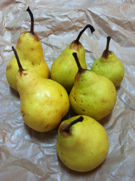 Pears Picked Paper Yellow Ripe