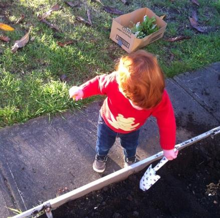 Dig Dig Dig toddler garden dirt soil spade vegetable