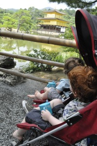 Kids Japan Kyoto Temple Golden Pavilion Kinkakuji