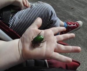 Kids Japan Ueno Park Green Beetle Baby Hold Hand Twins