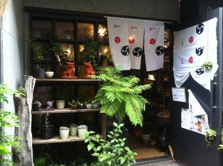 Japan Retail Tokyo Nursery Garden Display