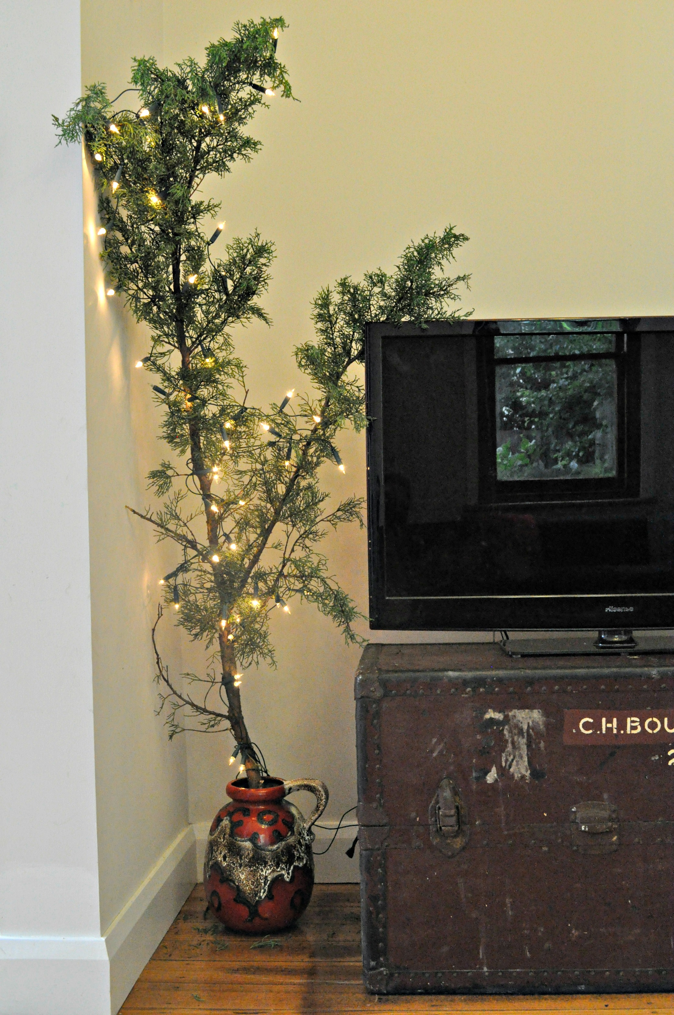 Christmas Tree Cypress Branch German