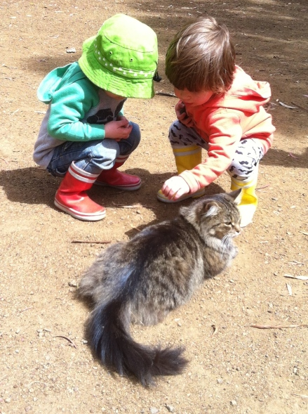 Cat Children Pat Twins Gumboots Boots