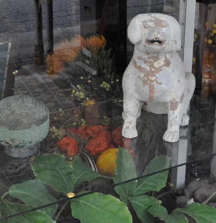 Kyoto Art Design Scene Dog Sculpture Clay Florist Shop Flowers Plants