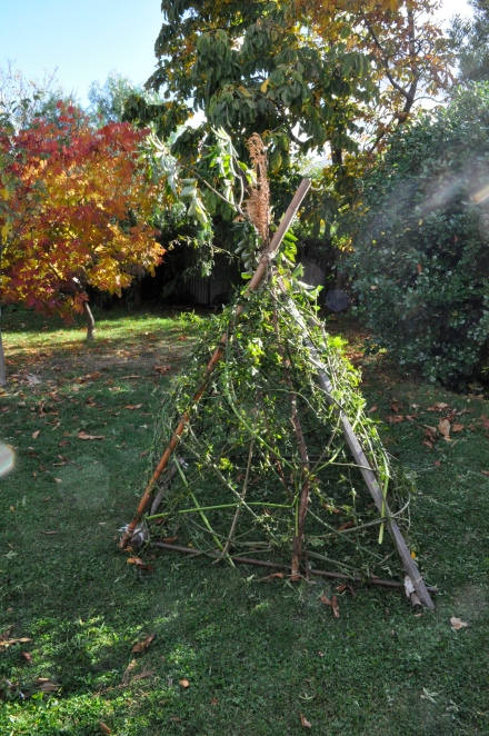 Autumn Fall Fort Tutorial Teepe Branches How To