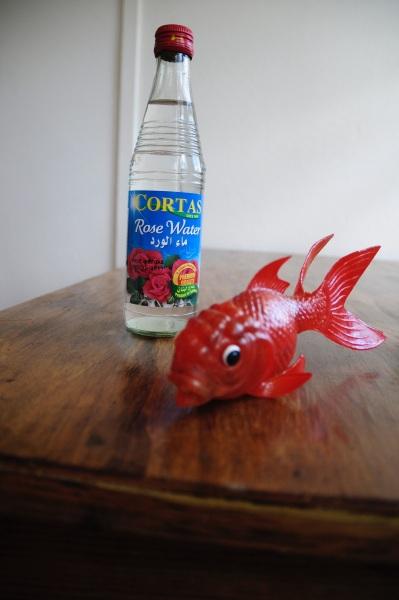 Nowrooz haft sen goldfish persian new year