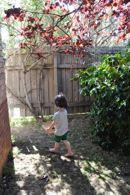 Cherry Picking Slow Living Home Made Recipe Cherries Kids