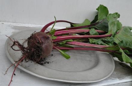 Ukrainian Beetroot Mamushka Olia Hercules Recipe Beet